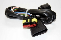 Injection disconnection harness for Kit BORA Type FIAT GP TS